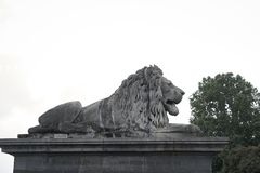 Lion sculpture on the set stock photos