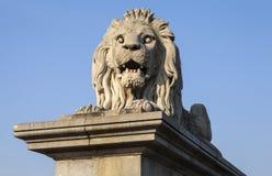 Lion Sculpture sul ponte a catena a Budapest fotografia stock libera da diritti