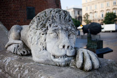 Lion Sculpture at Town Hall Tower in Krakow Royalty Free Stock Images