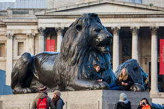 Lion sculpture in Trafalgar Square Royalty Free Stock Photography