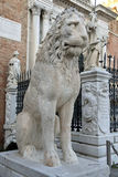 Lion Sculpture at the Venetian Arsenal, Venice Stock Photo