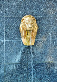 Lion sculpture water fountain. Lion water fountain sculpture, painted in imitation gold, on a turquoise stone wall, with a stream of fresh water coming out of it Royalty Free Stock Photo