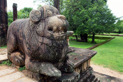 Lion sculptures of Polonnaruwa in Sri Lanka Stock Image