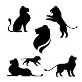 Lion set vector royalty free illustration