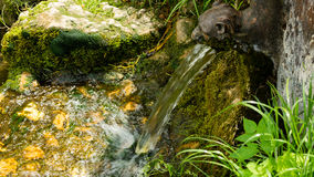 A lion shape fountain gushing water stream into the creek. A lion shape fountain placed over the stream pouring water into it. drops of the water are sprinkling stock photography