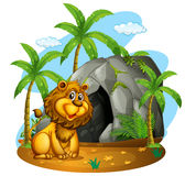 Lion sits in front of cave Stock Photography