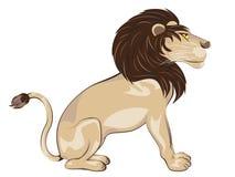 Lion Sitting Pose Royalty Free Stock Photo