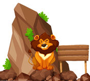 Lion sitting on rock in zoo Royalty Free Stock Images