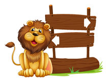A lion sitting beside a signboard Stock Photography