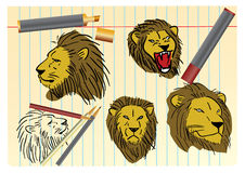 Lion sketching Stock Photos