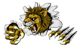 Lion smashing out. A scary lion mascot ripping through the background with sharp claws Royalty Free Stock Image