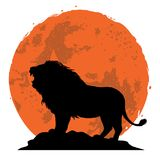 Lion Snarling on a Rock. Side View with Sunset Background. Vector Illustration Stock Images