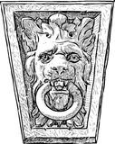 Lion snout with a ring Royalty Free Stock Images