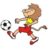 Lion and soccer ball Royalty Free Stock Photography