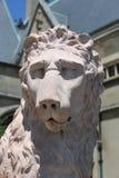 Lion sombre Image libre de droits