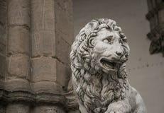Lion sombre Photo libre de droits