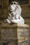 Lion sombre photographie stock