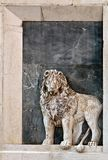 The lion of St Mark Stock Photo