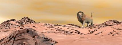 Lion in the desert - 3D render Stock Images