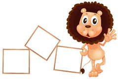 A lion standing beside the empty boards Stock Photography