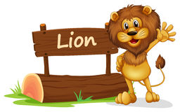 A lion standing beside a wooden signage Royalty Free Stock Photo