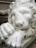 Lion statue. A lion statue royalty free stock image