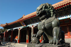 Lion Statue. A statue of copper lion at the gate of Summer Palace in Beijing, China Royalty Free Stock Photos