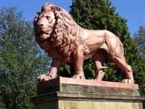 Lion statue 4. Metal lion statue, Zbiroh Castle, Czech republic Stock Image