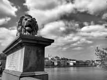 Lion Statue Architectural Details in Boedapest Stock Foto's