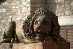 Lion statue in Assisi Stock Images