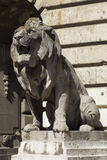Lion statue, budapest Stock Photo