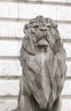 Lion statue, budapest Royalty Free Stock Photography