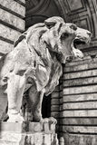Lion statue, budapest Royalty Free Stock Images