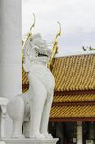 Lion statue in Buddhist temple / Lion statue Royalty Free Stock Photography