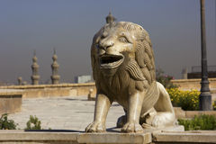 Lion statue. In Cairo,Egypt,statue of small marble lion Royalty Free Stock Photo