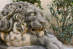Lion statue. Carved stone lion statue guarding the entrance to the Grand Master's Palace garden in Valletta, Malta Royalty Free Stock Photos