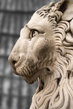 Lion Statue Cathedral St. Lawrence Genova Royalty Free Stock Photos