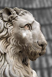 Lion Statue Cathedral St. Lawrence Genova Stock Photography