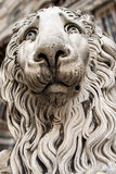 Lion Statue Cathedral St. Lawrence Genova Royalty Free Stock Images