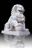 Lion statue in chinese style temple Stock Images