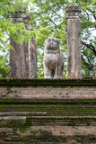 The lion statue within the council chamber of King Nissankamamalla at Polonnaruwa in Sri Lanka. The lion statue within the council chamber of King Stock Photos