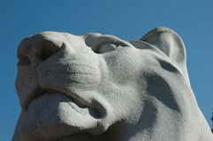 Lion statue detail. Detail of an ancient lion statue, against a blue sky Royalty Free Stock Photography