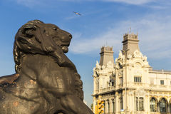 Lion statue detail at the base of the Columbus Monument in Barcelona Royalty Free Stock Image