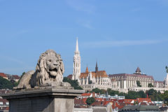 Lion statue and Fisherman bastion Royalty Free Stock Images
