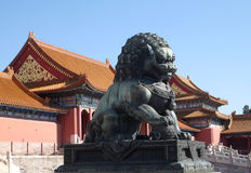 Lion Statue, Forbidden city in Beijing royalty free stock images
