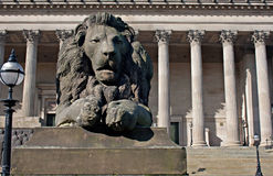 Lion statue in front of St Georges Hall, Royalty Free Stock Photo