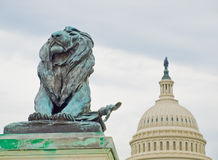 Lion Statue in Front of the US Capitol Building Stock Image