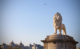 Lion statue guardian of westminster bridge London Royalty Free Stock Images