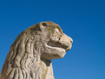 The lion statue head. Photo was made in the palace Nove Hrady, Czech Republic Royalty Free Stock Images
