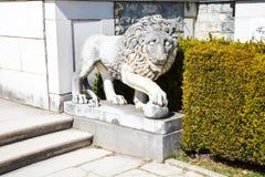 Lion Statue i trädgården av den Peles slotten, Rumänien Royaltyfri Foto
